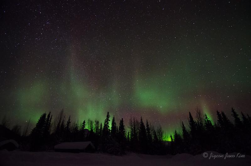 USA-Alaska-Wiseman-Aurora-2895.jpg