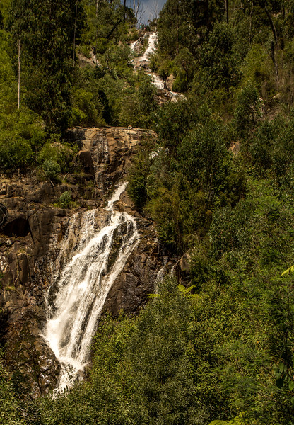 Steavenson Falls ~ January