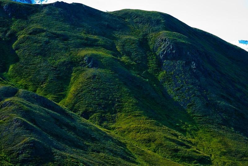 Hike through Denali National Park 19: Journey into Alaska