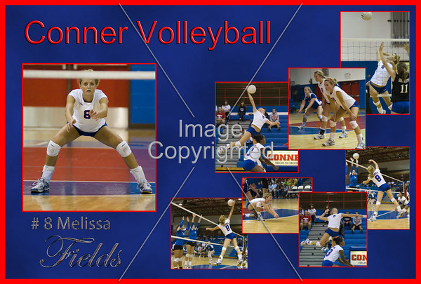 Conner Volleyball Posters