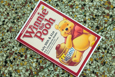 Winnie the Pooh (2016)