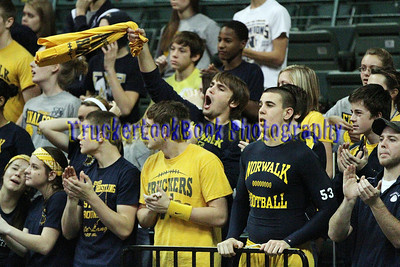 2012 State Volleyball / Fans
