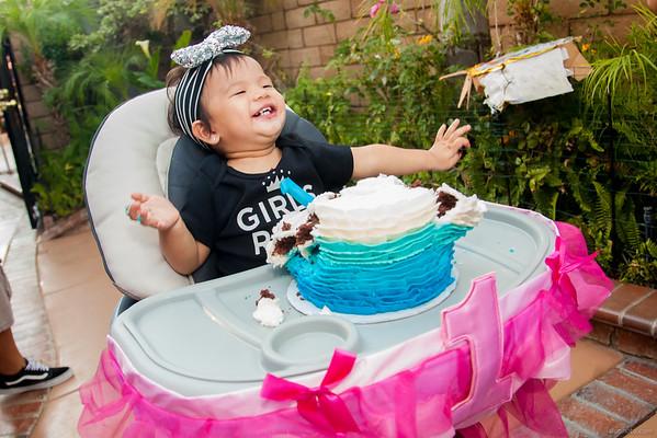 Maddie's 1st Birthday