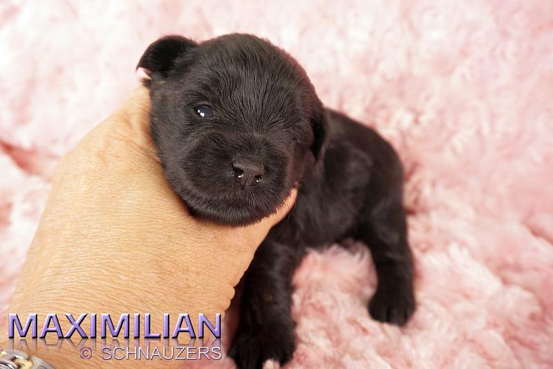 Yuliana 069.jpg