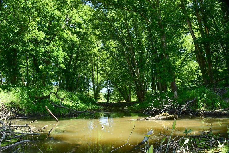 Wallkill River Kayaking-Wallkill River Kayaking (69 of 262)-010.jpg