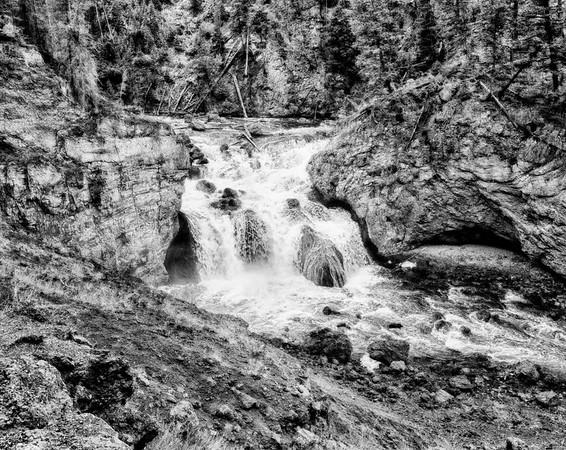 Yellowstone B&W