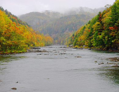 West Virginia- Fall- 05