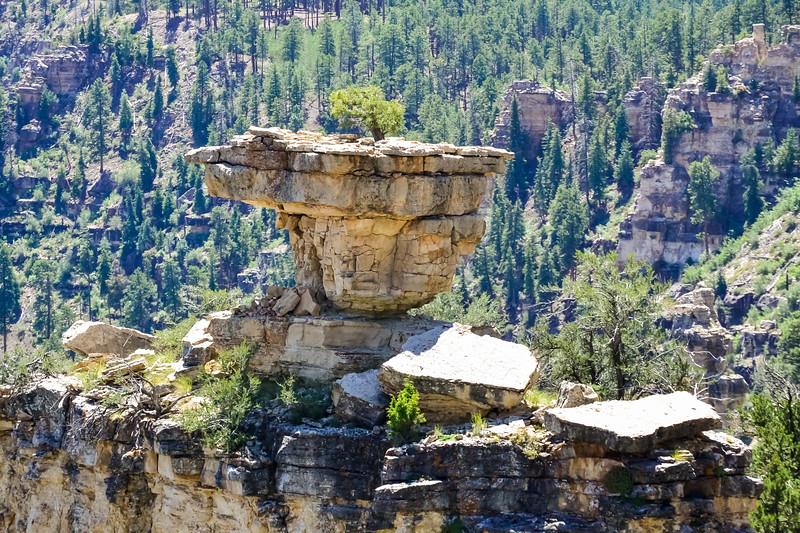 2019 Grand Canyon-215.jpg