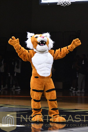 2018-10-16 CHEER Cheerleading Introductions at Late Night Madness