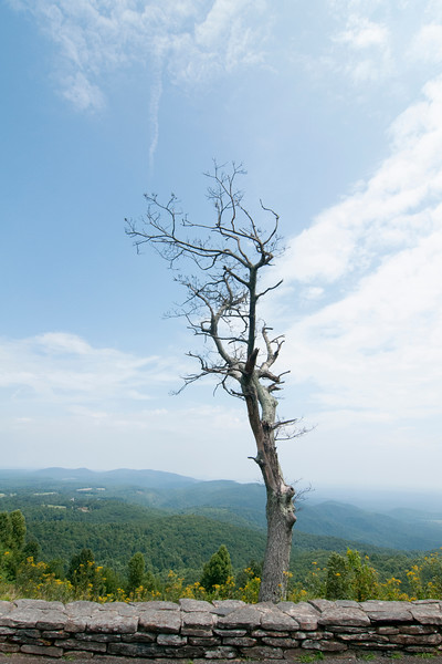 on the Blue Ridge Parkway in Virginia