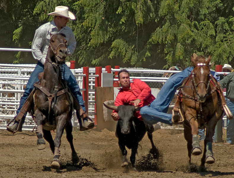 COOMBS RODEO-2009-3471A.jpg