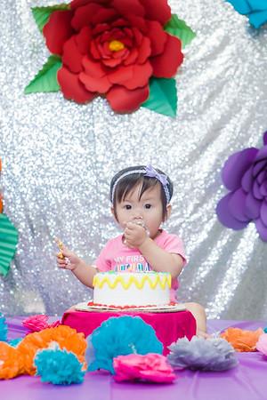 111217 - Amanda's First Birthday