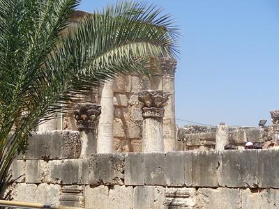 Capernaum 16