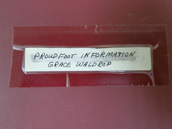 Proudfoot Genealogy from Grace Waldrop