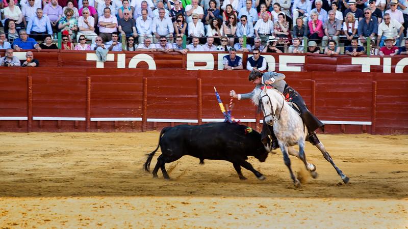 Bullfighting H5.jpg