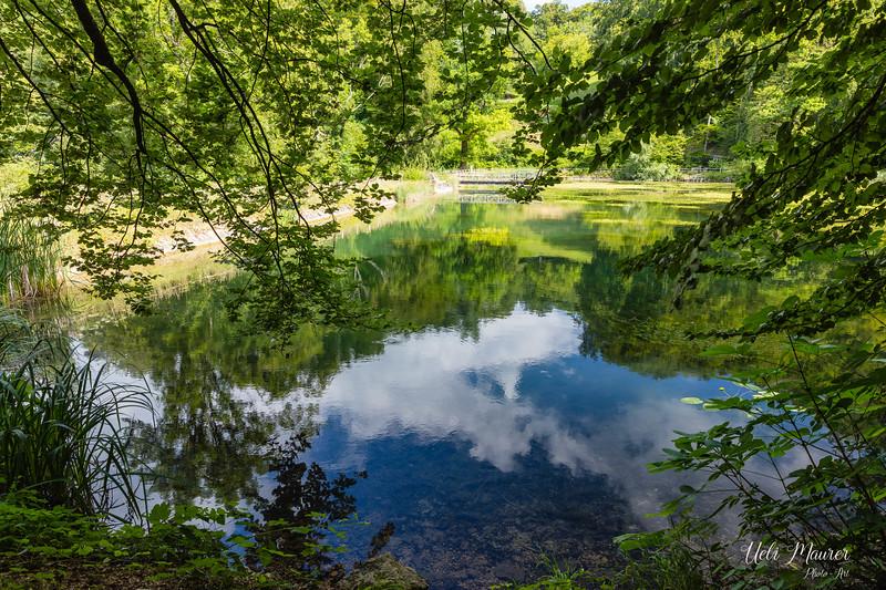 2018-07-11 Ermitrage Arlesheim + Park im Grünen Münchenstein 0U5A4034.jpg