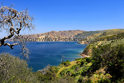Santa Cruz Island - Prisoners Landing 4/17/19