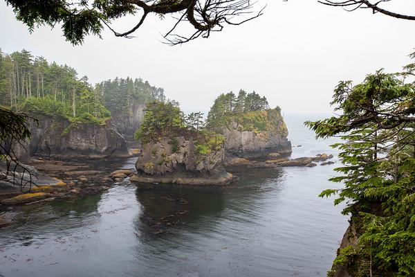 Pacific Northwest  Coast 101