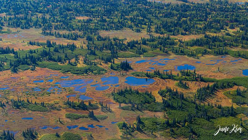 Rust's_Beluga Lake__6100728-2-Juno Kim.jpg