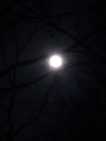 Full moon 101.JPG