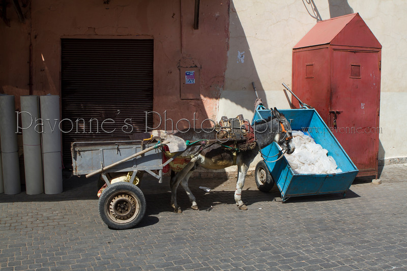 Morocco 1b 0546.jpg