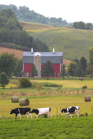 Vernon County Barns
