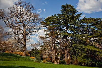 Dumbarton Oaks Garden - Georgetown DC - Mar 09