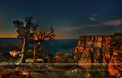 Juniper Trees and Grand Canyon Sunset