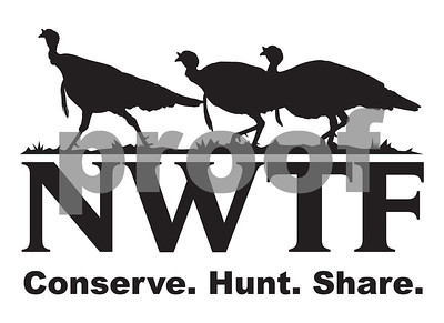 nwtf-concerned-about-drop-in-hunter-numbers