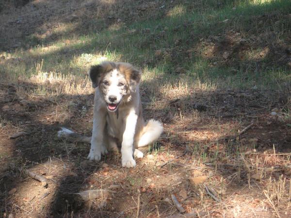 Maiya 4 months