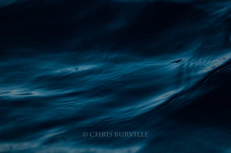 CBurvillePillarSamples027M.jpg