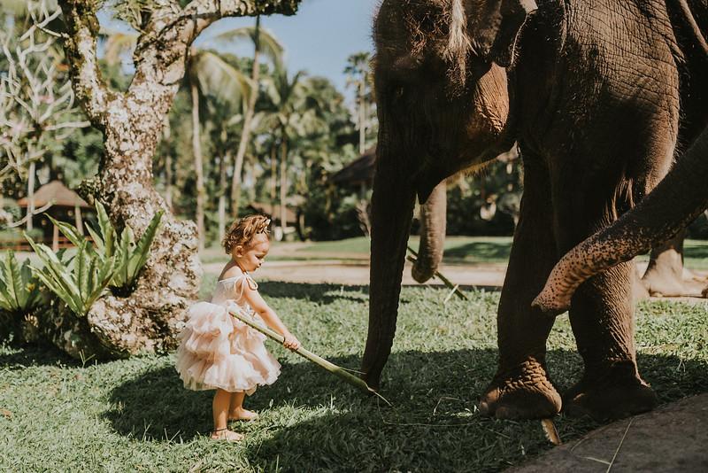 VTV_family_photoshoot_elephants_Bali_ (43).jpg