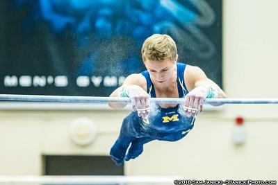 High Bar - Michigan Men's Gymnastics Vs Penn State 3-24-18