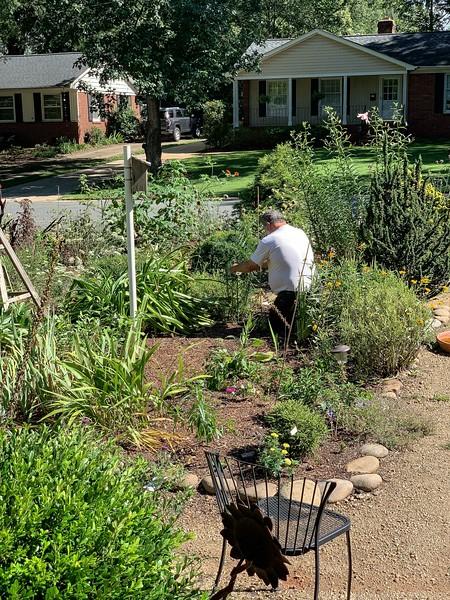 Lindie Wilson's front garden, W of path