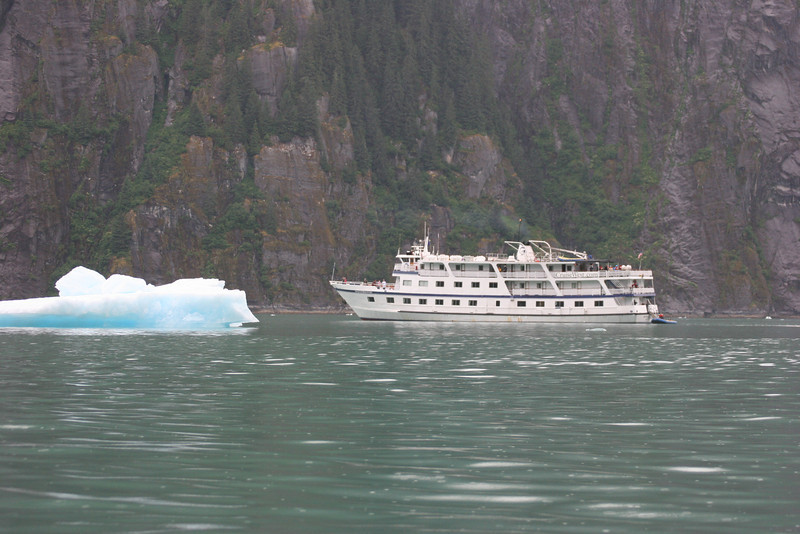 our ship in Tracy Arm