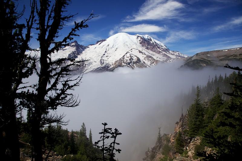 Mount Rainier and valley fog. Sunrise area.