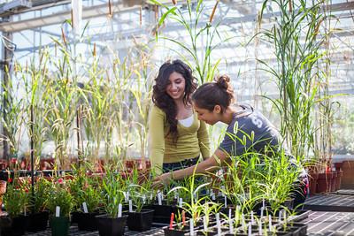 UC Davis Brochure Shoot