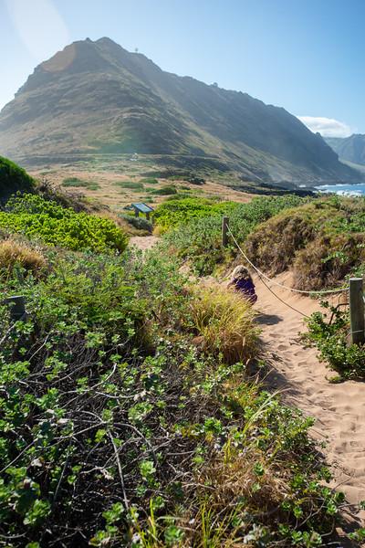 Hawaii2019-811.jpg