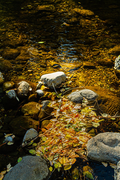Stones in a creek with calm, clear water flowing around the rocks