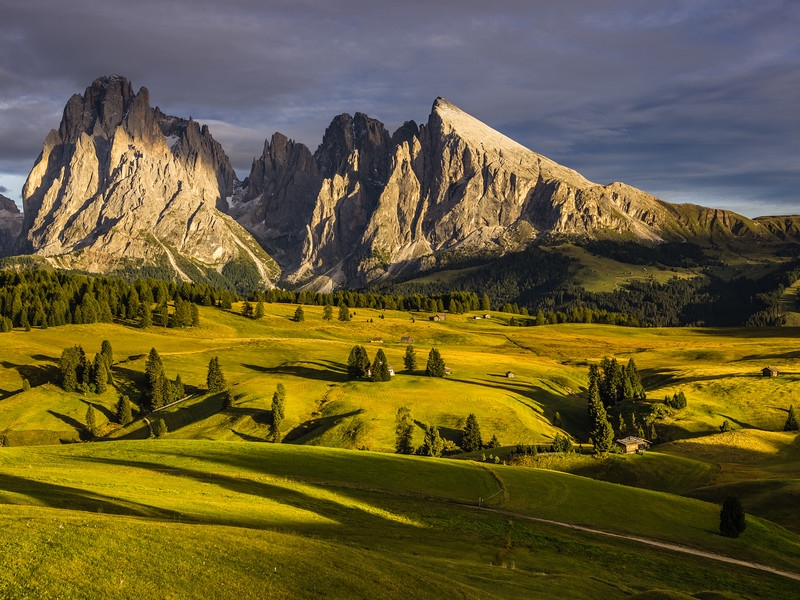 Alpe di Siusi in autumn afternoon light