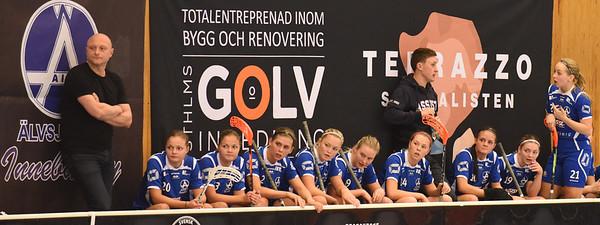 2015-11-15 D1 Älvsjö - Strömsbro