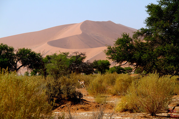 Sossusvlei, walk in the sand dunes, Namibia photo 4