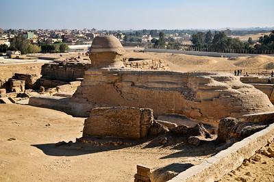 Egypt - Cairo - Sphinx