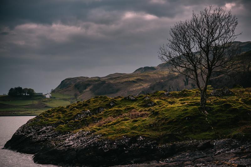 Scotland // by Larissa Cole