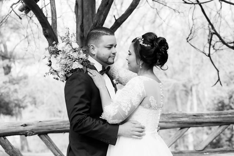Central Park Wedding - Ariel e Idelina-167.jpg