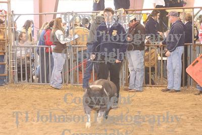 2010 KISD Class 3 Swine