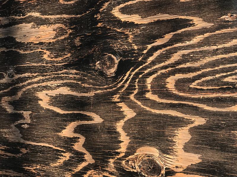 Plywood Pattern, Portland, 2020