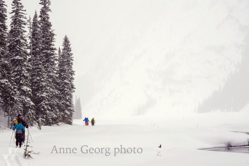 along-snowy-lakeshore.jpg