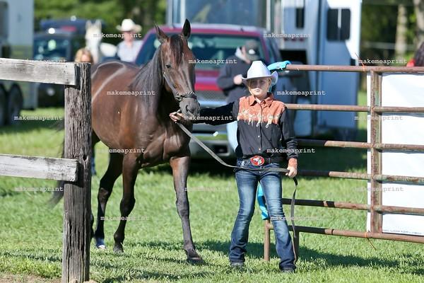 Moonsville Horse Show Sept 13, 2015