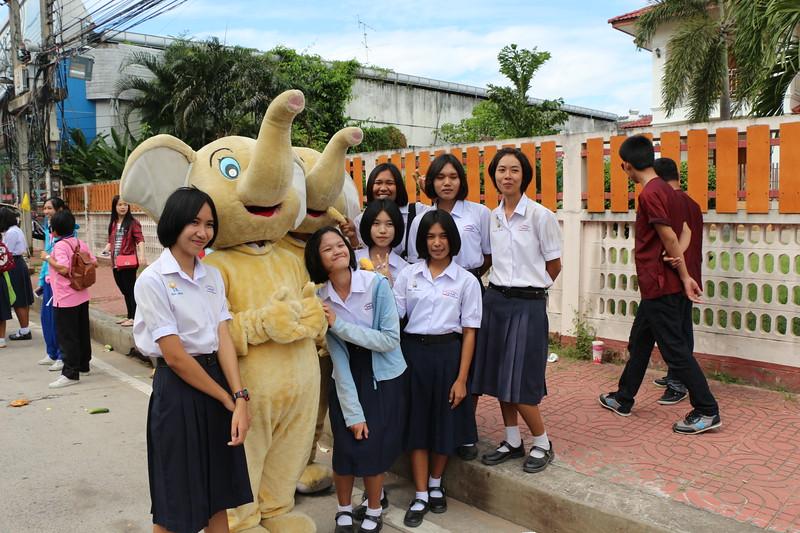 2014-11-14 Surin Elephant Welcome Feast 508.JPG